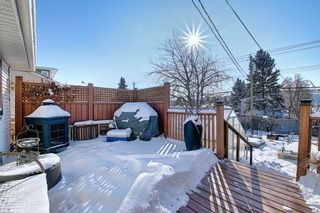 Photo 29: 4635 22 Avenue NW in Calgary: Montgomery Detached for sale : MLS®# A1068719