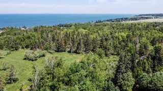 Photo 28: 1652 Ben Phinney Road in Margaretsville: 400-Annapolis County Residential for sale (Annapolis Valley)  : MLS®# 202116326