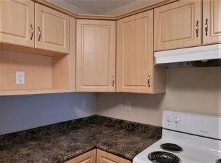 Photo 11: 224 7801 GOLF COURSE Road: Stony Plain Condo for sale : MLS®# E4260645
