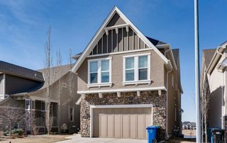 Main Photo: 63 MARQUIS Crescent SE in Calgary: Mahogany Detached for sale : MLS®# A1097013