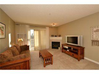 Photo 16: 208 128 CENTRE Avenue: Cochrane Condo for sale : MLS®# C4048864