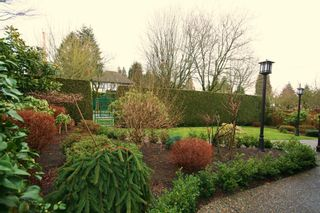 Photo 4:  in Vancouver: Home for sale : MLS®# v874332