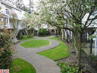 "Photo 39: 18 9036 208TH Street in Langley: Walnut Grove Townhouse for sale in ""Hunter's Glen"" : MLS®# F1211739"