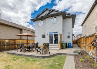 Photo 42: 44 ELGIN MEADOWS Manor SE in Calgary: McKenzie Towne Detached for sale : MLS®# A1103967