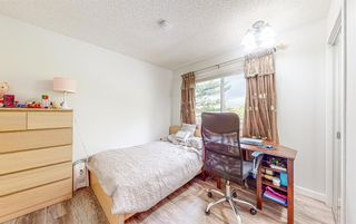 Photo 31: 24 Edforth Crescent NW in Calgary: Edgemont Detached for sale : MLS®# A1117288