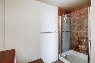 Photo 35: 1510 8710 HORTON Road SW in Calgary: Haysboro Apartment for sale : MLS®# A1052227