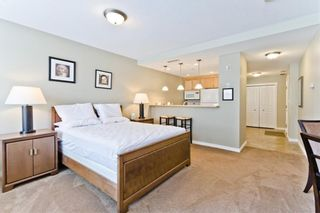 Photo 31: 206 1718 14 Avenue NW in Calgary: Hounsfield Heights/Briar Hill Apartment for sale : MLS®# A1068638