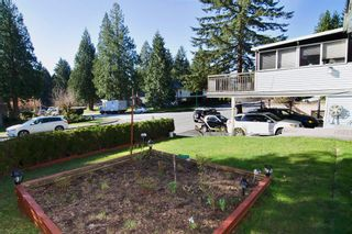 "Photo 4: 438 E BRAEMAR Road in North Vancouver: Upper Lonsdale House for sale in ""Upper Lonsdale/Braemar"" : MLS®# R2050077"