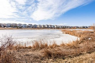 Photo 33: 64 SPRING Gate: Spruce Grove House for sale : MLS®# E4236658
