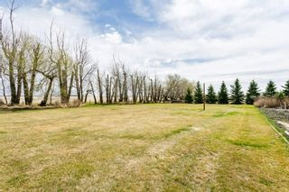 Photo 47: 472032 RR 233 S: Rural Wetaskiwin County House for sale : MLS®# E4231253