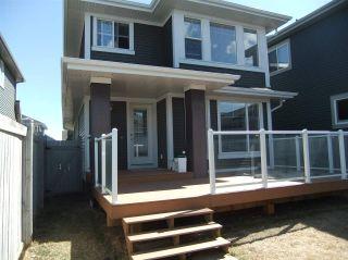 Photo 35: 5138 Corvette Street in Edmonton: Zone 27 House for sale : MLS®# E4241742
