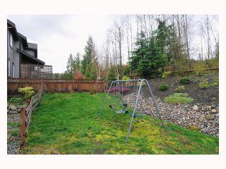 "Photo 10: 22922 VISTA RIDGE Drive in Maple Ridge: Silver Valley House for sale in ""SILVER RIDGE"" : MLS®# V819096"
