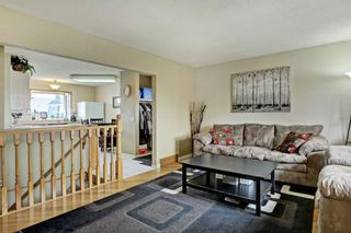 Photo 4: 3303 39 Street SE in Calgary: Dover Detached for sale : MLS®# A1084861