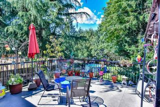 Photo 7: 14297 MELROSE Drive in Surrey: Bolivar Heights House for sale (North Surrey)  : MLS®# R2307641
