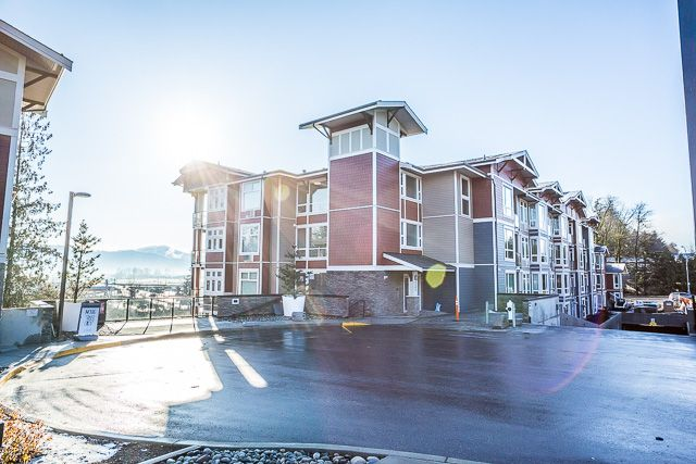 Main Photo: #308 2242 Whatcom Rd in Abbotsford: Abbotsford East Condo for rent