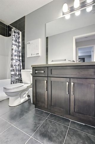 Photo 34: 1484 Copperfield Boulevard SE in Calgary: Copperfield Detached for sale : MLS®# A1137826