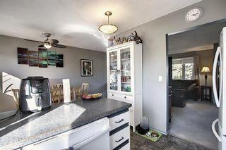 Photo 8: 1711 65 Street NE in Calgary: Pineridge Detached for sale : MLS®# A1038776