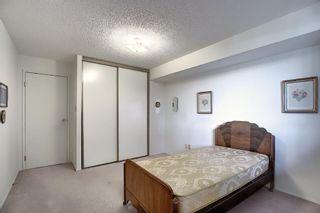 Photo 13: 505 9800 Horton Road SW in Calgary: Haysboro Apartment for sale : MLS®# A1060584