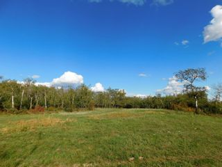 Photo 9: Rge Rd 231 North of Twp Rd 564: Rural Sturgeon County Rural Land/Vacant Lot for sale : MLS®# E4262842