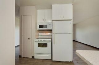 Photo 4: 13111 85 Street in Edmonton: Zone 02 House for sale : MLS®# E4251770