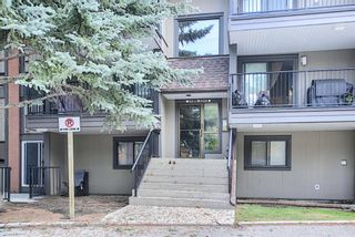 Photo 4: 3312 13045 6 Street SW in Calgary: Canyon Meadows Apartment for sale : MLS®# A1126662