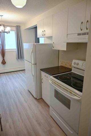Photo 6: 204 10320 113 Street in Edmonton: Zone 12 Condo for sale : MLS®# E4250245