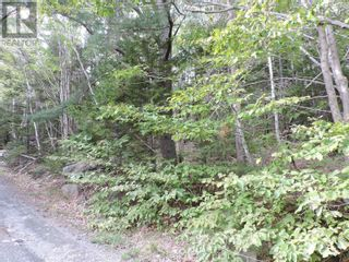 Photo 9: Lot 1 Headline Road in Lower Cornwall: Vacant Land for sale : MLS®# 202123037
