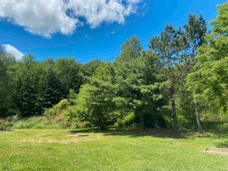 Photo 12: 4667 TRAFALGAR Road in Hopewell: 108-Rural Pictou County Residential for sale (Northern Region)  : MLS®# 202115926