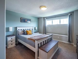 Photo 12: 139 Evansborough Crescent NW in Calgary: Evanston Detached for sale : MLS®# A1138721