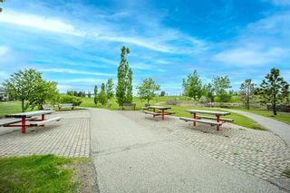 Photo 35: 212 3212 Valleyview Park SE in Calgary: Dover Apartment for sale : MLS®# A1116209