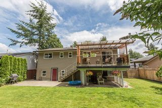 Photo 18: 3001 265B Street in Langley: Aldergrove Langley House for sale : MLS®# R2092848