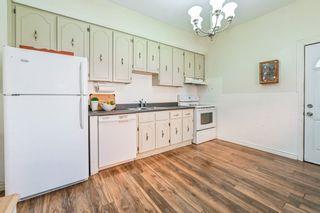 Photo 14: 73 Kinrade Avenue in Hamilton: House for sale : MLS®# H4065497