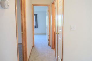 Photo 25: 170 Tipping Close SE: Airdrie Detached for sale : MLS®# A1121179