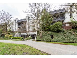 """Photo 1: 203 1945 WOODWAY Place in Burnaby: Brentwood Park Condo for sale in """"Hillside Terrace"""" (Burnaby North)  : MLS®# R2249414"""