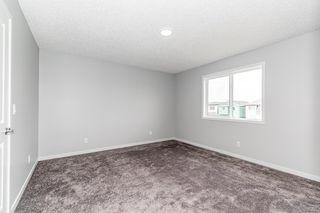 Photo 14: 2060 159 Street in Edmonton: Zone 56 House for sale : MLS®# E4236407