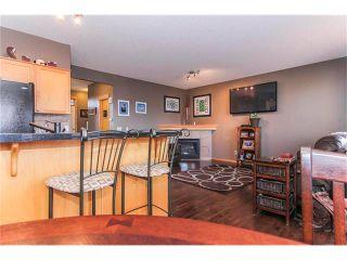 Photo 16: 381 ELGIN Way SE in Calgary: McKenzie Towne House for sale : MLS®# C4036653