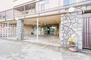 """Photo 25: 32 11900 228 Street in Maple Ridge: East Central Condo for sale in """"MOONLITE GROVE"""" : MLS®# R2576690"""