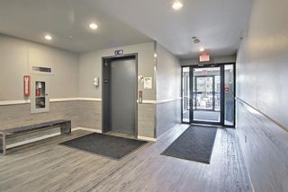 Photo 25: 3303 181 Skyview Ranch Manor NE in Calgary: Skyview Ranch Apartment for sale : MLS®# A1123883