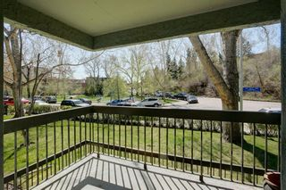 Photo 23: 204 626 24 Avenue SW in Calgary: Cliff Bungalow Apartment for sale : MLS®# A1106884