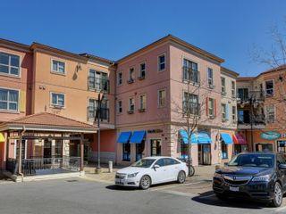 Photo 2: 305 1642 McKenzie Ave in : SE Lambrick Park Condo for sale (Saanich East)  : MLS®# 873141