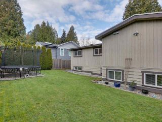 Photo 28: 5324 6 Avenue in Delta: Pebble Hill House for sale (Tsawwassen)  : MLS®# R2537670