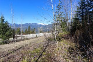Photo 14: Lot 11 Ivy Road: Eagle Bay Vacant Land for sale (South Shuswap)  : MLS®# 10229941