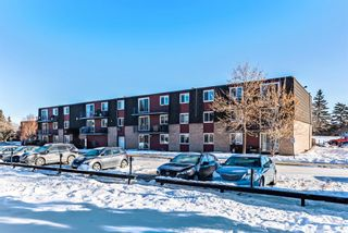 Photo 23: 15D 80 Galbraith Drive SW in Calgary: Glamorgan Apartment for sale : MLS®# A1058973