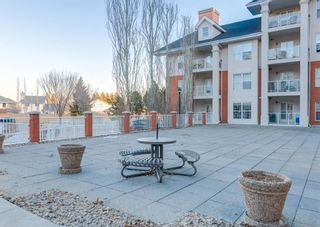 Photo 46: 327 45 INGLEWOOD Drive: St. Albert Apartment for sale : MLS®# A1085336