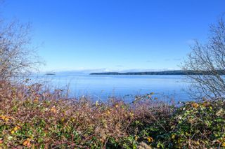 Photo 99: 5975 Garvin Rd in : CV Union Bay/Fanny Bay House for sale (Comox Valley)  : MLS®# 860696