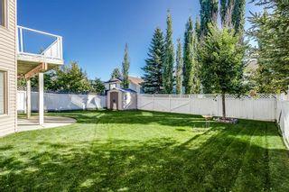 Photo 33: 232 Citadel Park NW in Calgary: Citadel Detached for sale : MLS®# A1144556