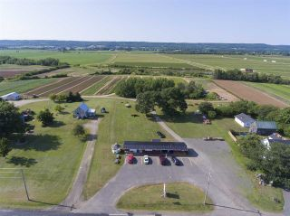Photo 14: 2969 Highway 1 in Aylesford East: 404-Kings County Farm for sale (Annapolis Valley)  : MLS®# 201919454