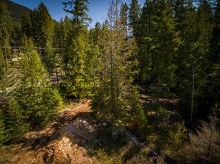 Photo 10: LOT 2 HIGHWAY 3A in Nelson: Vacant Land for sale : MLS®# 2455415