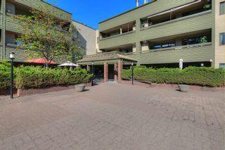 Photo 19: 219 1056 Bernard Avenue in Kelowna: Kelowna North House for sale (Central Okanagan)  : MLS®# 10239718