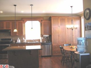 """Photo 5: 21017 83A Avenue in Langley: Willoughby Heights House for sale in """"YORKSON"""" : MLS®# F1024577"""